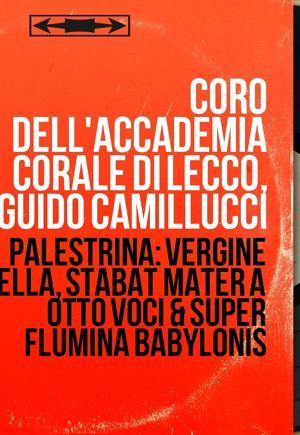 Guido Camillucci