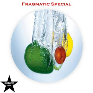 Fragmatic Special, Vol.1