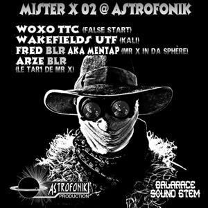 Mister X, Vol. 2