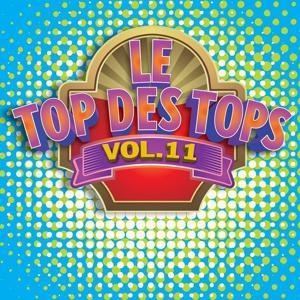 Le Top des Tops des années 80 / 90, Vol. 11