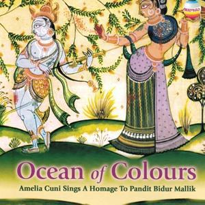 Ocean of Colours (A Homage to Pandit Bidur Mallik)