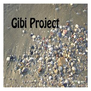 Gibi Project