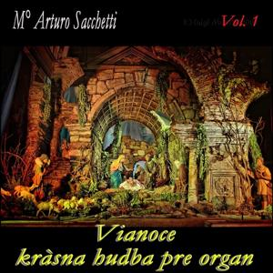 Vianoce: kràsna hudba pre organ, vol. 1