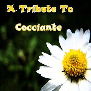 A Tribute to Riccardo Cocciante