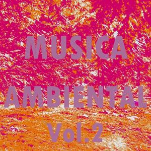 Musica Ambiental, Vol. 2