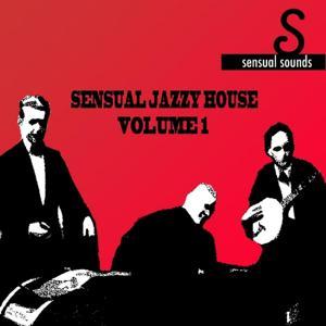 Sensual Jazzy House, Vol. 1