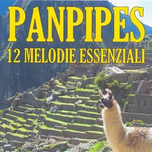 Panpipes : 12 melodie essenziali