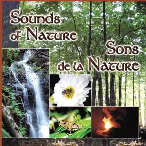 Sons de la nature, Vol. 2