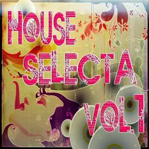 House Selecta, Vol. 1