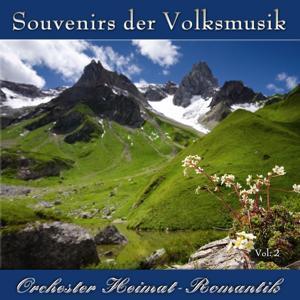Souvenirs der Volksmusik Vol. 2