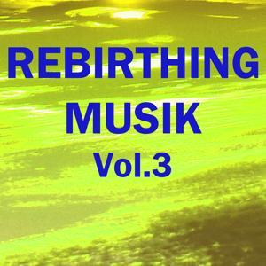 Rebirthing musik, vol. 3