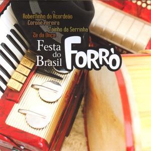 Festa do Brasil - Forrò