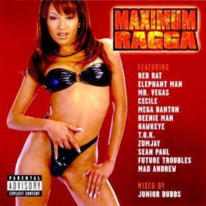 Maximum Ragga, Vol. 1