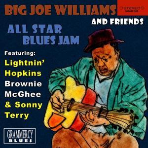 Big Joe Williams and Friends