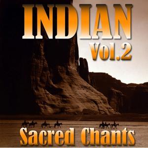 Ambient Voyage: Indians, Vol. 2