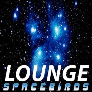 Lounge Spacebirds 2011