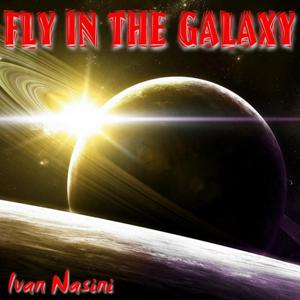 Fly in the Galaxy