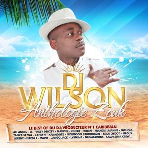 Le Best of du DJ producteur No. 1 Caribbean DJ Wilson (Anthologie Zouk 48 Hits)