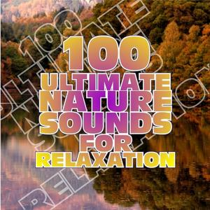 100 Ultimate Nature Sounds for Relaxation
