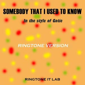 Somebody That I Used to Know in the Style of Gotie (Ringtone Version)