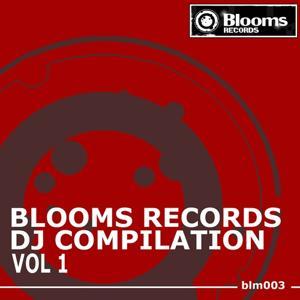 Blooms Records DJ Compilation, Vol. 1