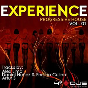 Experience Progressive House, Vol. 1