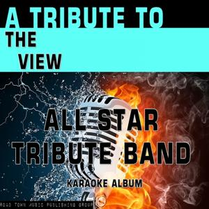 A Tribute to The View (Karaoke Version)