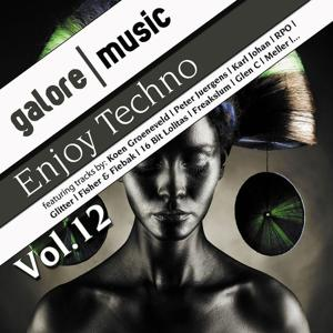 Enjoy Techno, Vol. 12