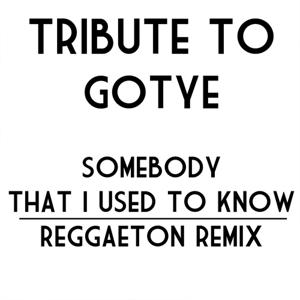 Somebody That I Used To Know: Tribute to Gotye (Remix Miami Reggaeton Version 2012)