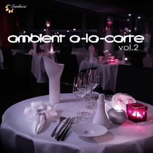 Ambient A-La-Carte, Vol. 2
