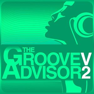The Groove Advisor, Vol. 2
