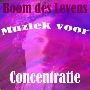 Muziek voor concentratie