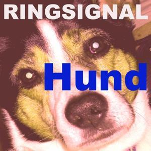 Hund ringsignal