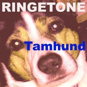 Tamhund ringetone