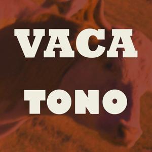 Tono Vaca