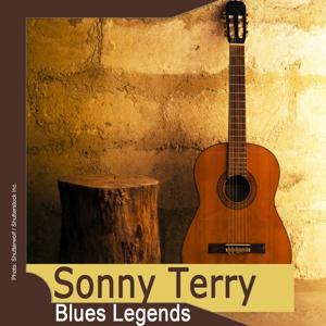 Blues Legends: Sonny Terry