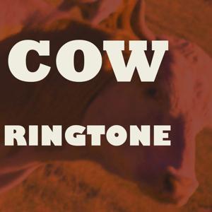 Cow Ringtone