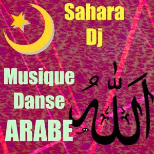 Musique danse arabe
