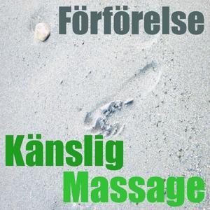Känslig massage (Vol. 3)