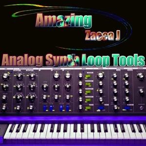 Amazing (Analog Synth Loop Tools)