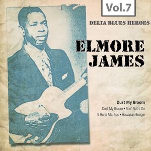 Delta Blues Heroes, Vol. 7