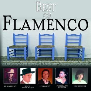 Best of Flamenco, Vol. 1