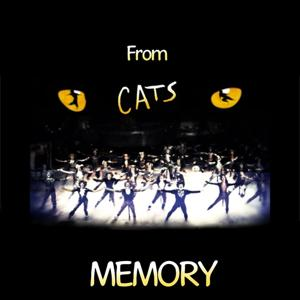 Memory (Theme From the Musical