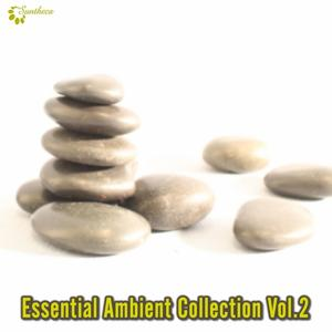 Essential Ambient Collection, Vol. 2