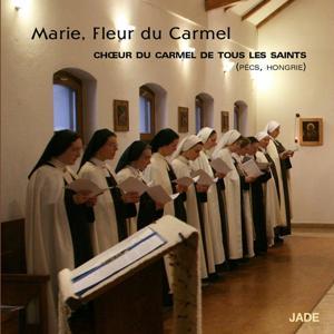 Mária, kármel virága (Marie, fleur du Carmel)