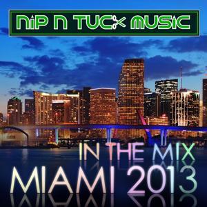 Nip n Tuck in the Mix Miami 2013