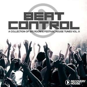 Beat Control - Progressive & Electro House, Vol. 9