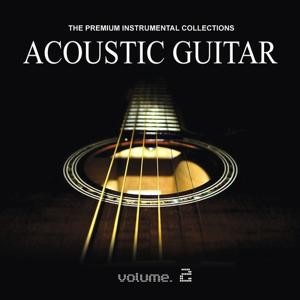 Acoustic Guitar, Vol. 2