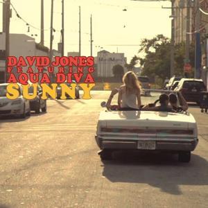 Sunny (Full Mixes)