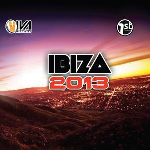 Ibiza 2013 (1st Groove Viva Records)